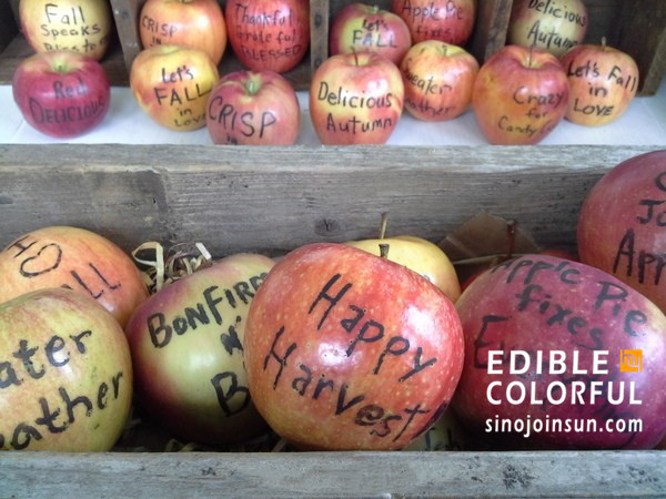 edible food marker draw on apples